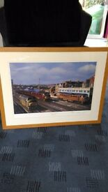 Limited Edition Train Print