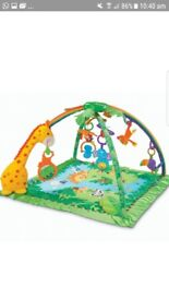 Baby deluxe Rainforest gym