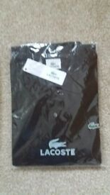 Brand new lacoste polo shirt Brown