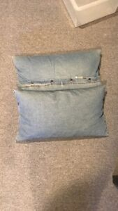 Two LARGE couch pillows