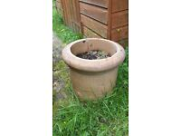 Chimney pot planter from Victorian tenement, W:35cm X H:30cm