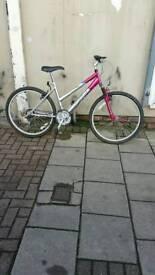 """Silver Optima Solana Mountain Bike, 26"""" Wheels, 18 Speed, 18"""" Frame"""