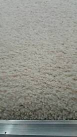 BEIGE CARPET IN GOOD CONDITION 11FT 1 INCH X 11FT.