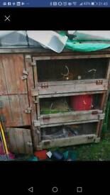 3 section rabbit/guinea pig hutch