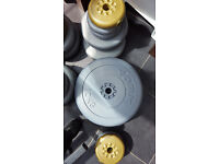 York Fitness Weights Bench, dumbells and barbell