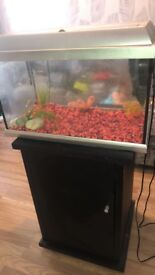 Lovely fish tank and stand