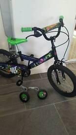 "16"" turtles bike"