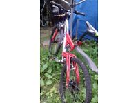 Mountain bike for quick sale. Moving home.