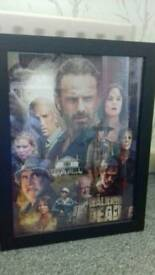 The walking dead framed picture