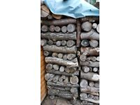 Seasoned hard wood logs for sale - £35 per 4-5ft stack. Buyer collects.