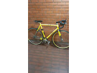 schwinn single gear road bike
