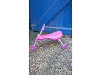 pink scuttlebug