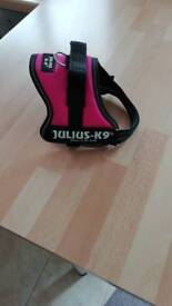 Julius K9 dog harness mini mini