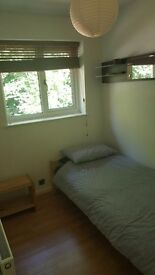 SINGLE ROOM for rent in fully refurbished 2 bed house