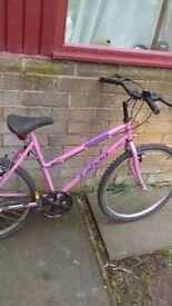 Womens. 24 inch bike. Good tyers