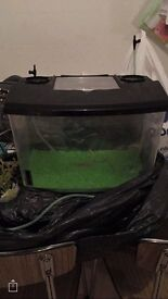 24 litre tank ideal for small lizzards etc