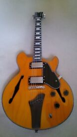 John Etheridge Signature hollowed body guitar in mint condition. NEW PRICE!