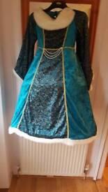 Fancy dress 10-12years