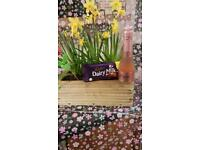 Mother's Day Gifts free local delivery