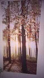 Two Next Tree Prints