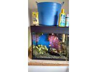100 Liter jewel Aquarium