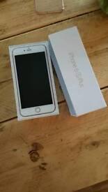 iphone 6s plus 16gb rose gold (unlocked)