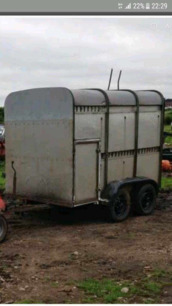 Ifor Williams stock trailer ( pony / horse )