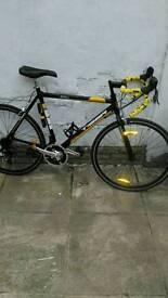 Sigma tiger road bike