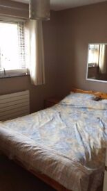 Room to Rent in a Lovely House, Fully Furnished. AVAILABLE NOW!
