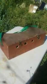 Ferret bow box double
