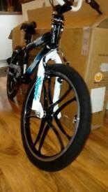Freestyle BMX bike