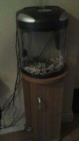 2 X fish tanks & stands