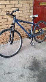 Adults Carrera mountain bike £25!!!
