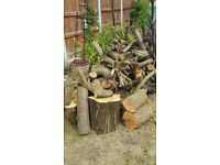 Free logs for wood burner