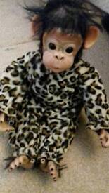 Aston Drake chimpanzee baby collectable like new