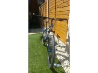 Trek 4300 Disc mountain bike