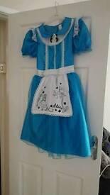 Alice in winderland fancy dress costume