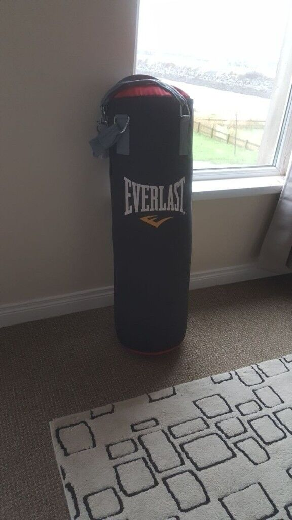 Everlast punch bag with wall bracket and gloves