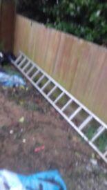 Ladders/step ladders