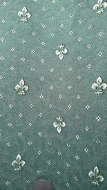 Green carpet remnant