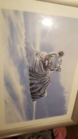 Large tiger print picture with frame