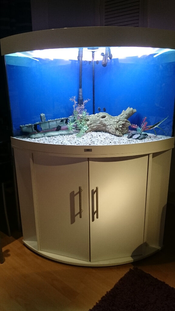White Juwel Corner Fish Tank For Full Set Up