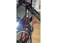 BIG ONE GIANT comp Retro mountain bike