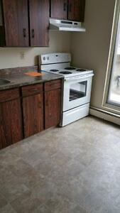 1 Bedroom Apartment Awesome Deal! Edmonton Edmonton Area image 3