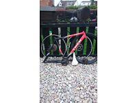Trek bike bundle