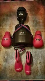 2 x Full Sets Boxing/ Kickboxing/ Martial Arts Protective Gear
