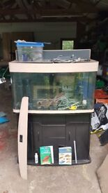 Large dome fronted fish tank and accessories - Needs some work