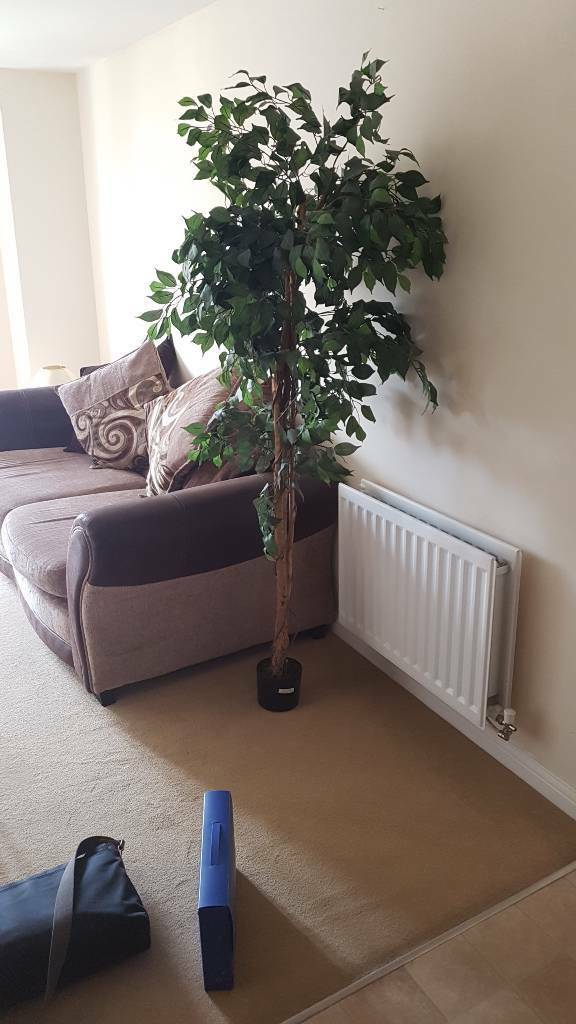 Artificial tree for home. £5