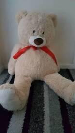 Xl clintons teddy