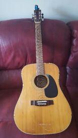 Kimbara model 25 acoustic guitar.